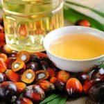 Los beneficios del aceite de palma a análisis
