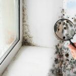¿Qué hacer cuando nuestra casa presenta humedades?